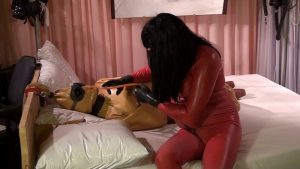 Brown Rubber Doll in a latex dress